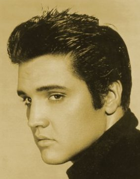 Elvis Presley Natural Hair Color