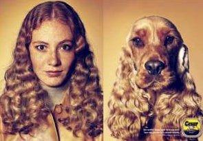Friseur Frisur De Frisuren Fotos Beispiele Und Links Frisuren